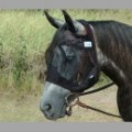 Crusader Quiet Ride Fly Mask