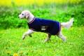Rambo Waterproof Fleece Dog Rug
