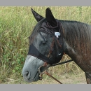 Crusader Quiet Ride Fly Mask W/Ears
