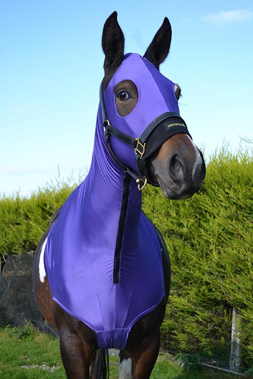 horzehoodz-purple-topaz-large.jpg