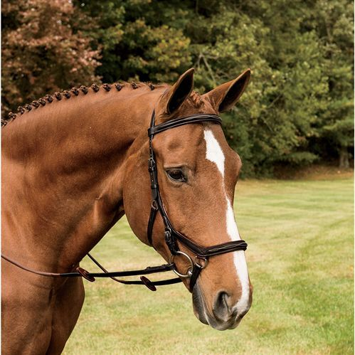 rambo-micklem-deluxe-comp-bridle.jpg
